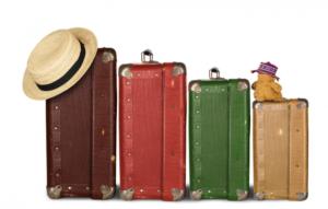 sognare valigia