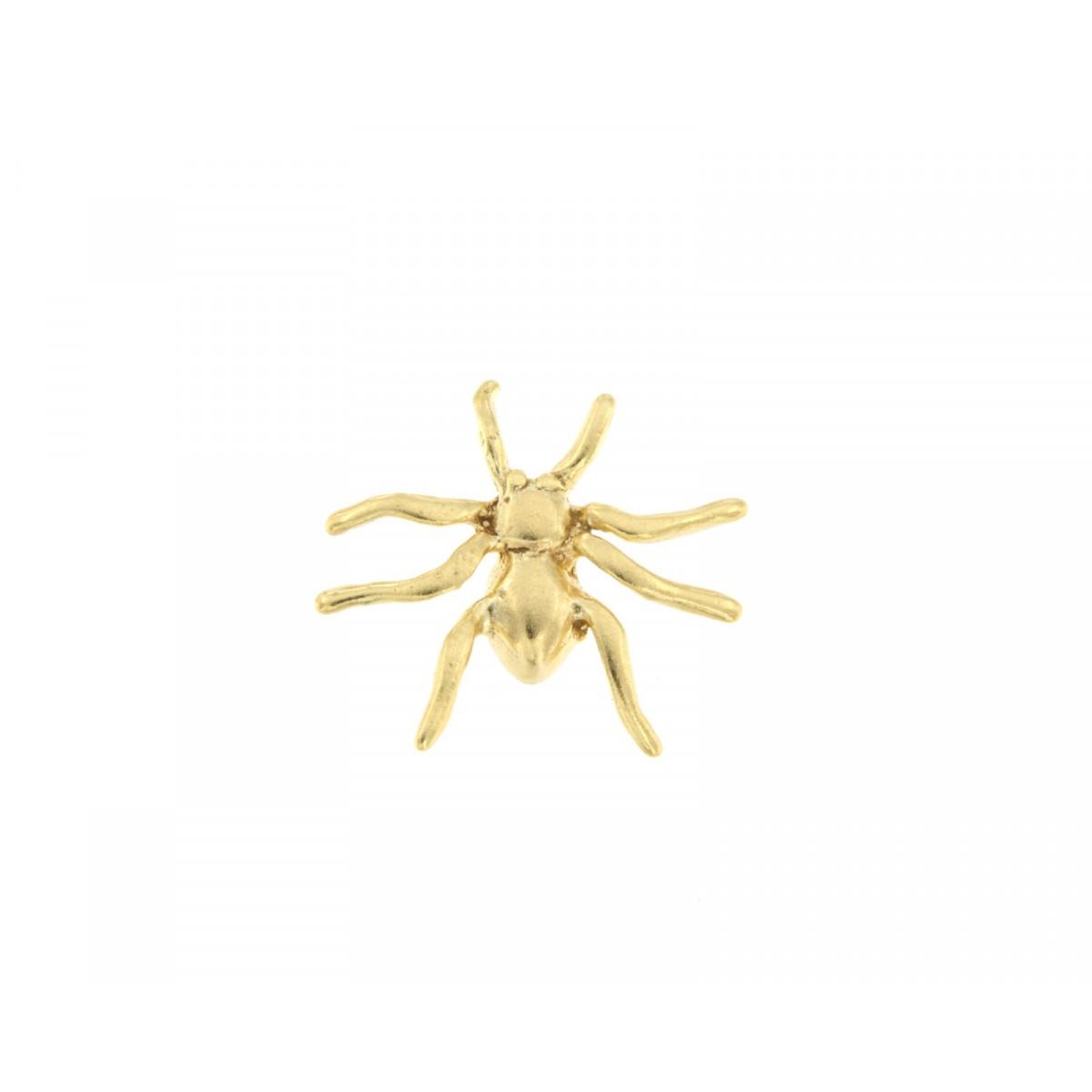sognare ragno dorato